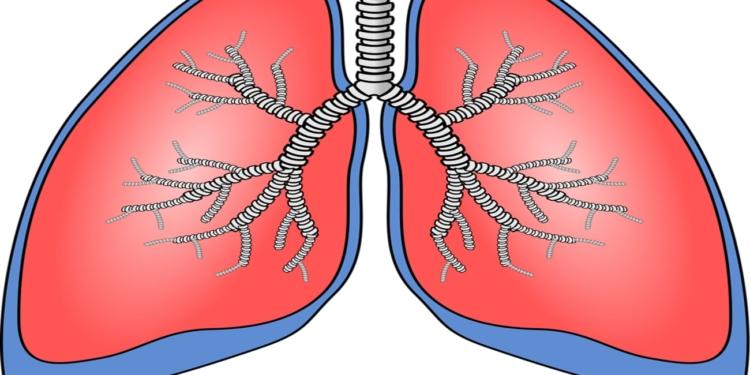 اعراض سرطان الرئة اعراض مفاجئة (هل تعاني من احداها)؟