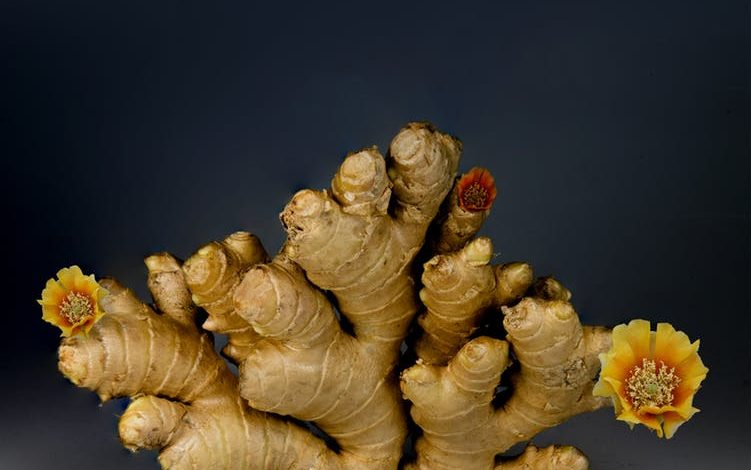 Ginger: Can it reduce nausea caused by Chemo?