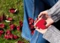 الحفاظ على صحة القلب : إليك أفضل 30 طريقة لتقوية عضلة قلبك