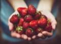 نظام لو كارب الغذائي و 11 نوع من الفاكهة التي يمكنك تناولها أثناء إتباعه